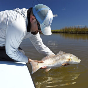 clay sheward release 300x300 Buggy Whippin: Galveston sight casting with Capt. Clay Sheward